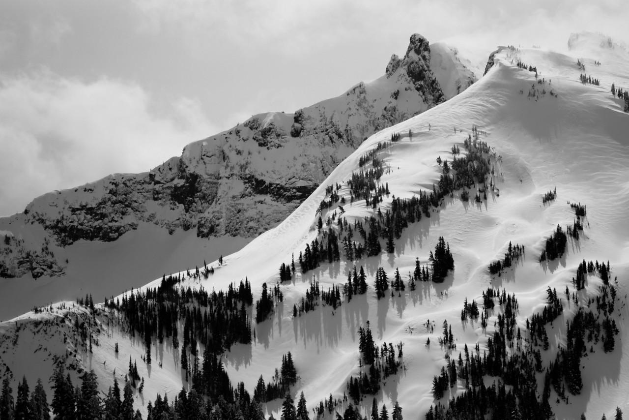 Mt Rainier B&W 004