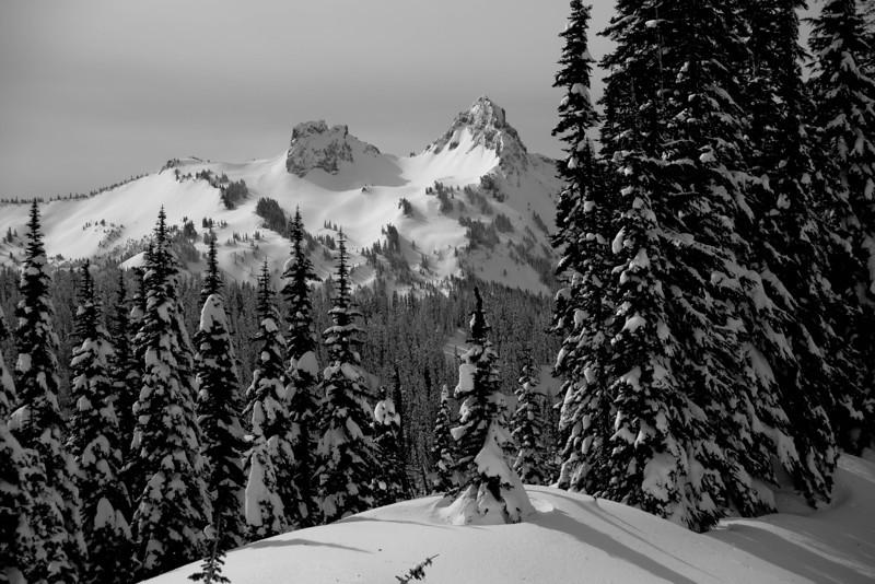 Mt Rainier B&W 014