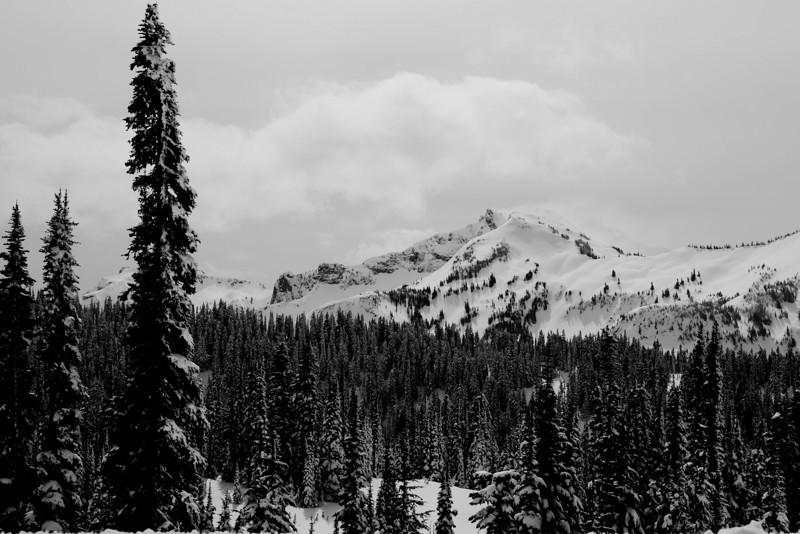 Mt Rainier B&W 001