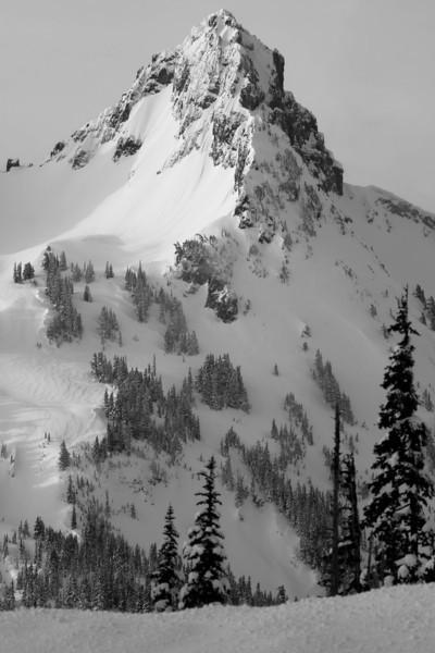 Mt Rainier B&W 006