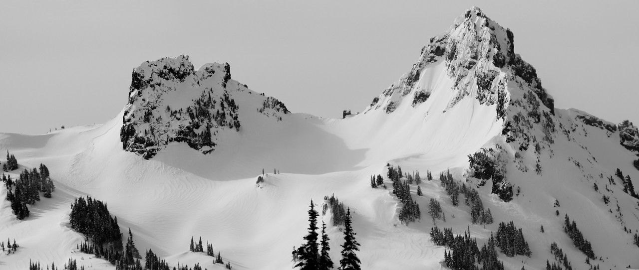 Mt Rainier B&W 012
