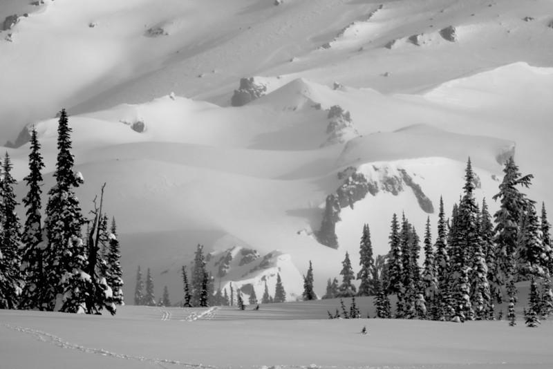 Mt Rainier B&W 008