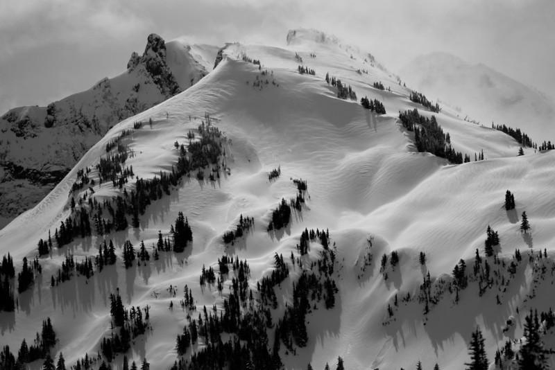 Mt Rainier B&W 003