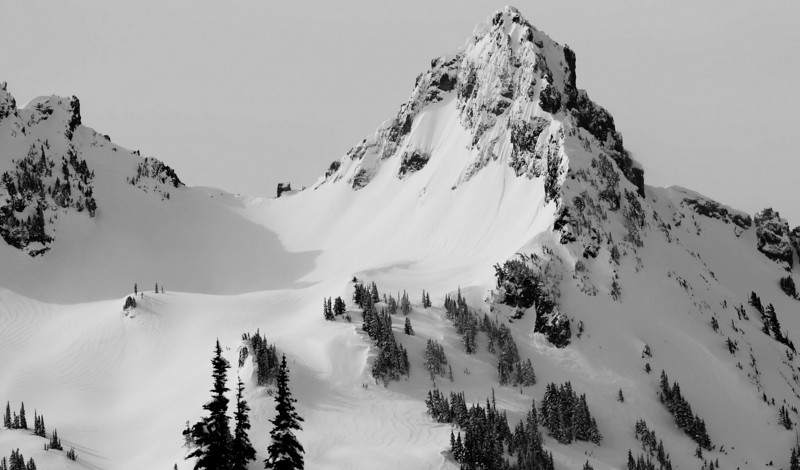 Mt Rainier B&W 011