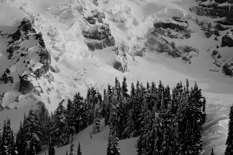 Mt Rainier B&W 018