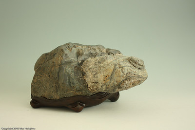 """Longevity"" (天寿 Tenju); 17"" W x 14"" D x 9 "" H;  Jadeite from Thomes Creek  https://suisekiart.com/2009/12/04/live-long-and-prosper/"