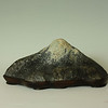 """Fuji-san; W 12"""" x D 7"""" x H 6""""; Clear Creek<br /> <br /> Every Japanese suiseki collector dreams of finding a stone that resembles Mt. Fuji, which represents the classic mountain form.  <br /> <br /> This stone is a nearly perfect suiseki.  The material is a good medium hard stone (probably serpentine) with beautiful color and a rich patina. The peak is well defined and comes slightly towards the front, and the stone has good balance and shape in all three dimensions.  The two ends come slightly forward, embracing the viewer, and the back is nicely rounded. Though the peak is nearly centered, the difference in slope and visual mass between the right and left introduce enough asymmetry for balance. <br /> <br /> This is an elegant, quiet, stone.  It does not have strong colors, texture or movement.  A refined and elegant daiza suits it well.<br /> <br /> Notice the three legs.  Each leg is positioned to seem to support the main visual masses of the stone, and the size and shape of each is different.  The middle leg is essentially two legs merged together."""