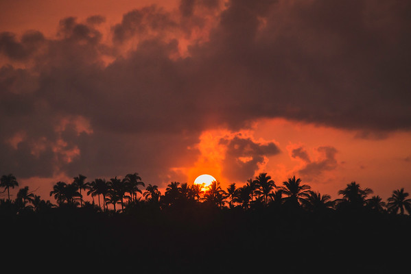 Puako, Hawaii