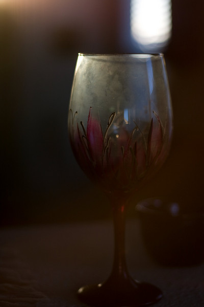 "Image Copyright 2009 by DJB. Wine glass painted by Theresa Fike ( <a href=""http://www.FikeStudio.com"">http://www.FikeStudio.com</a>). All Rights Reserved."