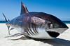 "White Death, Glenn Sanders - Swell Sculpture Festival, Pacific Parade, Currumbin Beach, Gold Coast, Queensland, Australia. Photos by Des Thureson:  <a href=""http://disci.smugmug.com"">http://disci.smugmug.com</a>."