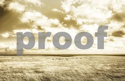 untitled shoot-9616-Edit-Edit-Edit