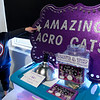 The Amazing Acro-cats, May 10, 2019 at Fort Mason