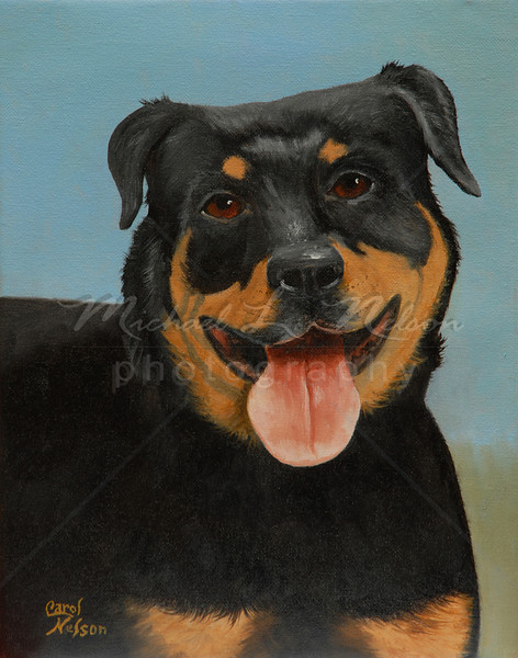 "<font size =5><b>""Cujo""<font size =3></b> 11""x14""  The original Oil Painting Has been SOLD.   By special arrangement with the owner prints are still available for purchase.  Available in 11""x14"" only:  *Lustre Print on Kodak Professional Paper   $29.95 Metallic Paper  $49.95  *Giclee prints on rolled canvas $62.50  *Giclee prints on mounted canvas $149.95   NOTE: Carol can create a heirloom Oil Painting of your pet. Please contact me for more information."