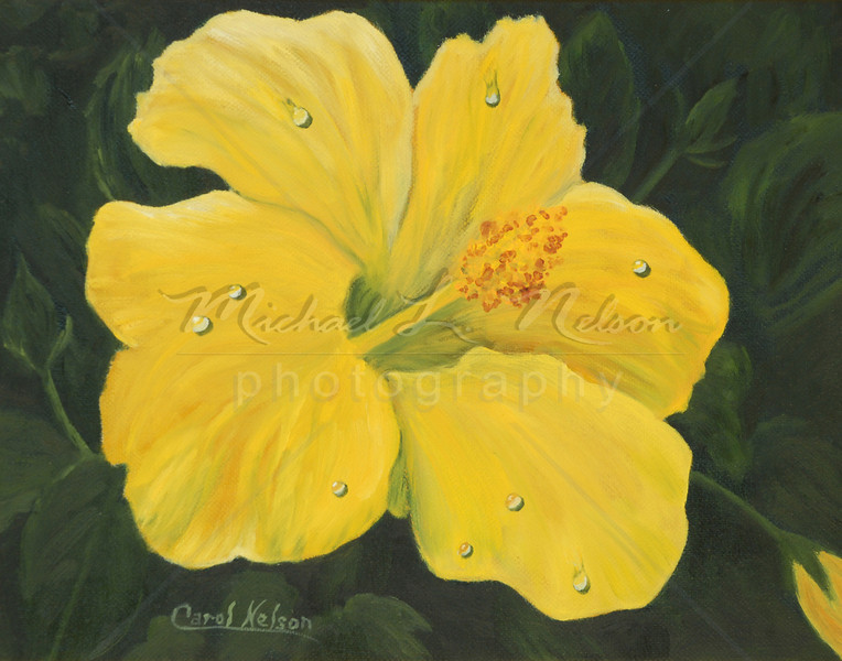 "<font size =5><b>""Yellow Hibiscus""<font size =3></b> 11""x14""  The original Oil Painting is not for sale; however prints are available for purchase.  Available in 11""x14"" only:  *Lustre Print on Kodak Professional Paper   $29.95 Metallic Paper  $49.95  *Giclee prints on rolled canvas $62.50  *Giclee prints on mounted canvas $149.95"