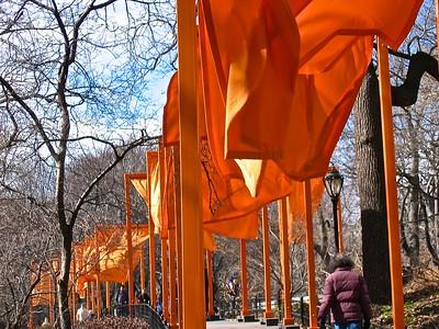 The Gates Central Park - Christo / Jean-Claude