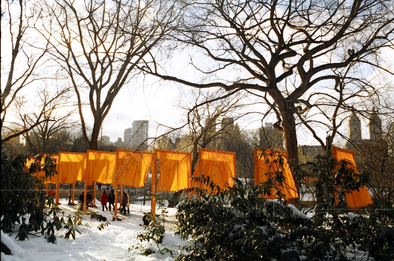 """The Gates; New York City Central Park """"The Gates""""; Central Park. NYC"""