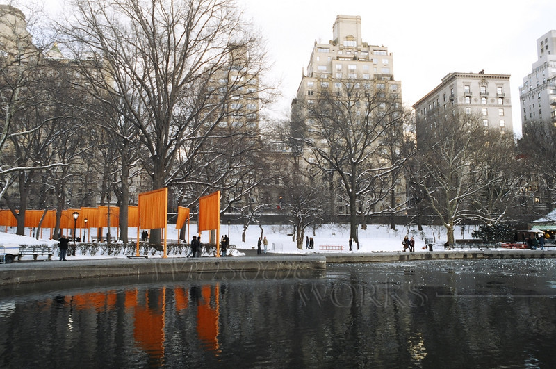 """""""The Gates"""" reflections; Central Park. NYC"""