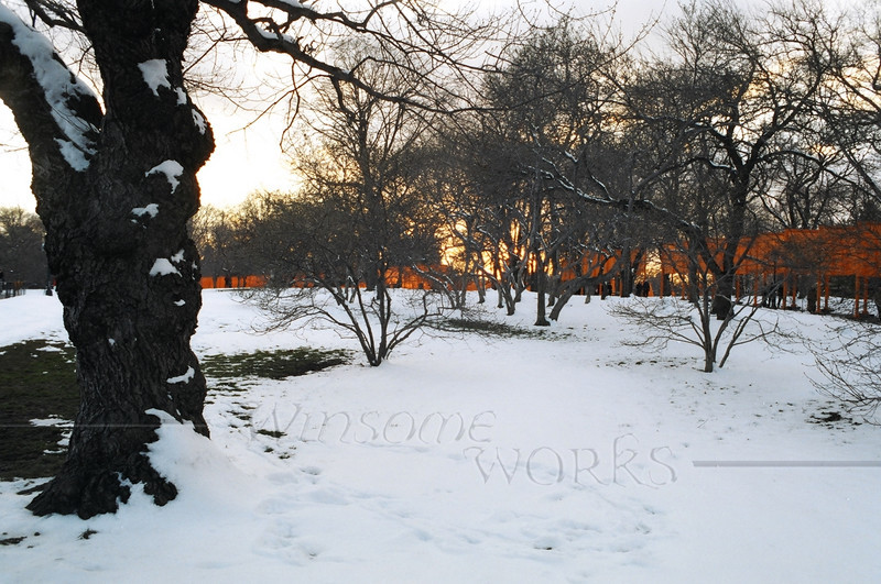 """The Gates""  just marching along, catching fading light through the trees of Central Park"