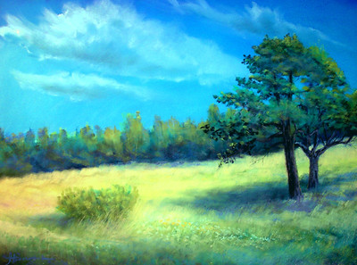 "Christina's Meadow 19*'x25"" Soft Pastel on Sand Paper Private Collection"