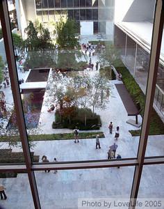 MOMA Window III