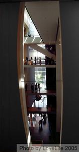 MOMA Levels V -c