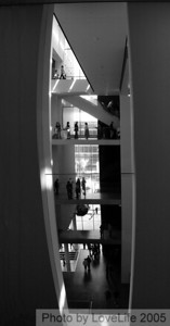 MOMA  Levels V -b