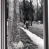 Florence Park Cascine<br /> Maureen Murphy, BA Spring 2009