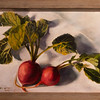 Linda Smith, MA 2014<br /> Radishes