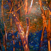 Dream Nature<br /> Oil on Canvas<br /> Fo Kwan, MA Sp 10