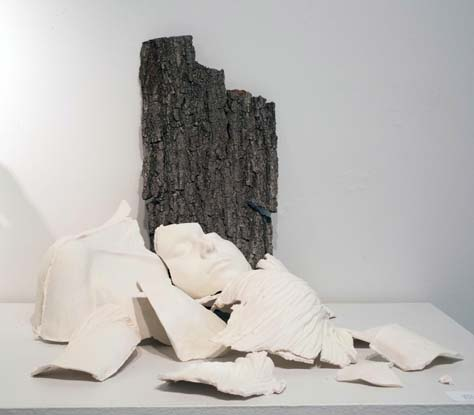 Mary Alice Trotter, BFA 2013<br /> Irrevocable
