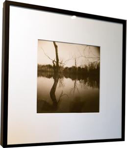 Denise Schilling<br /> Quarry Lake II