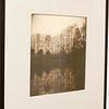 Denise Schilling Adjunct Faculty; Photography; Digital Imaging