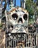 Can Skull - 1