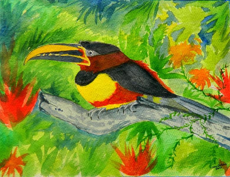 1ss-Chestnut-eared Aracari, Brazil  9x11 5, watercolor, nov 2, 2015 DSCN8977