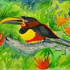 1ss-Chestnut-eared Aracari, Brazil  9x11 5, watercolor, nov 2, 2015 DSCN8977