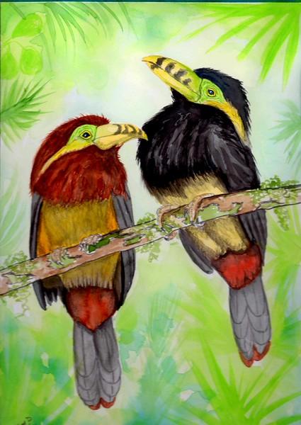 1-Spot-billed-Toucanets, Brazil, 9x12, watercolor & mixed media, nov 12, 2015