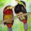 1-Spot-billed-Toucanets, Brazil, 9x12, watercolor & mixed media, nov 12, 2015