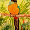 1-Great Jacamar - Panama  6x8 5, watercolor, dec 4, 2015 DSCN9171A