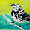 Black and White Warbler, 4x6, watercolor, nov 21, 2015 DSCN9115