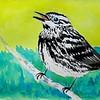 Black and White Warbler, 4x6, watercolor, nov 21, 2015 DSCN9115
