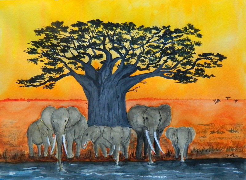 1-Baobab Sunset, 11x15, watercolor, april 7, 2016 DSCN0405A