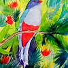 Cuban Trogon, 11x15, watercolor, aug 3, 2016 DSCN0258