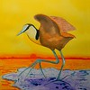 African Jacana, 10x14, watercolor, june 16, 2016 DSCN0016