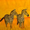 1-Zebras Pair, 11x15, watercolor, april 5, 2016 DSCN0399