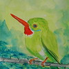 Jamaican Tody, 4x6, watercolor, aug 15, 2016 DSCN0304