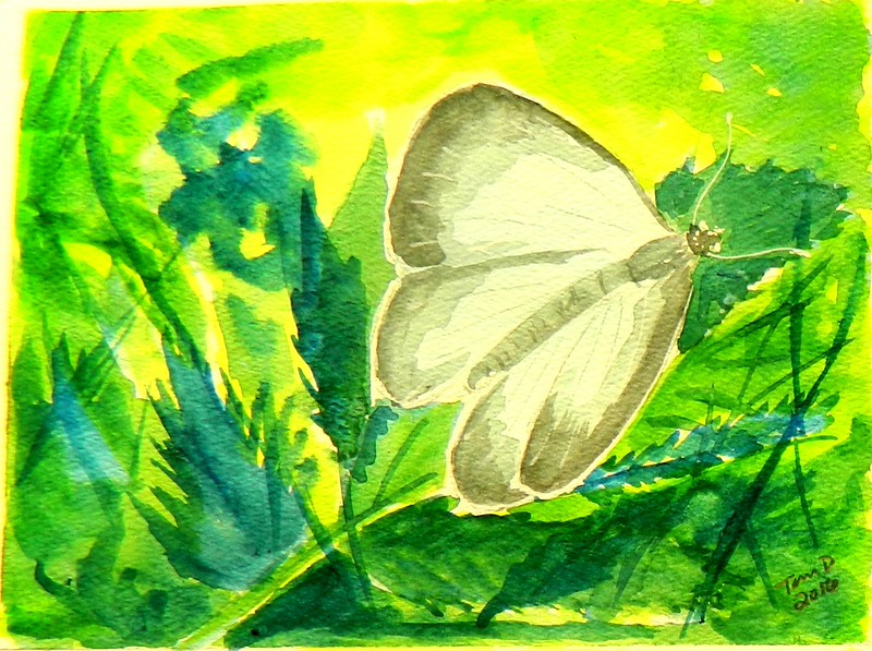 1-Spring Azure, 4 5x6, watercolor, march 18, 2015 DSCN0204