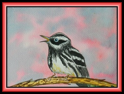 Black & White Warbler, 5x7, watercolor, March 1, 2018.