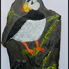 Horned Puffins, 10x17, acrylic on slate, feb 8, 2018.