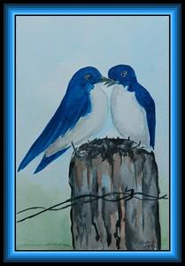 Tree Swallows, 5.75x9, watercolor, feb 19, 2018.