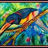 Collared Aracari, 10x14, watercolor, april 10, 2018.DSCN0029